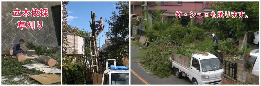 庭木伐採、立木の枝落し、草刈りの酒匂園 / 即日・当日